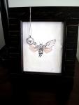 Dusty roe moth in Silver